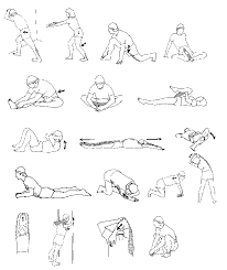 bob's stretching routine diagram stretching pinterest Body Transformation Workout Plan At Home bob's stretching routine diagram Body Fat Loss Before and After
