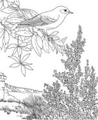 Small Picture Free Printable Coloring PageState Birds and Flowers Coloring