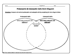 Prokaryotes Vs Eukaryotes Venn Diagram Worksheet Prokaryotic And Eukaryotic Cells Worksheet Venn Diagrams Teaching