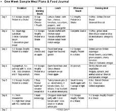 Sample Food Logs Sample Food Logs Magdalene Project Org