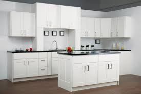 Admirable Modern Kitchen Decoration Ideas Featuring Cleanly White