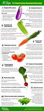 Crop Rotation Chart Vegetable Gardening 10 Steps To Vegetable Garden Success How Do I Maintain My