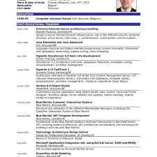 Curriculum Vitae Simple English Example Geocvcco Template Pdf Cv ...