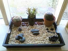 12 wonderful indoor rock garden ideas
