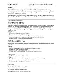 Sales And Marketing Manager Resume Sample Sales Manager Resume