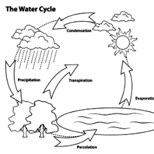 Simple Water Cycle Coloring Page Free Printable Coloring Pages Rain
