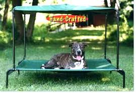 Outdoor Dog Bed With Canopy Beds Elevated Pet Shade Raised Ideas ...