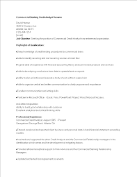 Credit Analyst Resume Free Commercial Banking Credit Analyst Resume Templates At