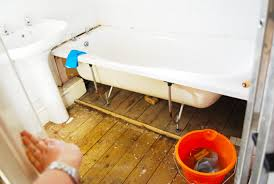 How To Get Urine Smell Out Of Bathroom Interesting How To Remove The Smell Of Urine From Wooden Floorboards