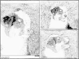 Coloriage Montage De Portraits De Haiko Imprimer Pour Les