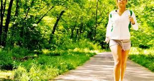 Image result for caminhada