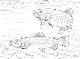 Small Picture Salmon Fish Coloring Pages Coloring Coloring Pages