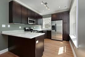 kitchen furniture photos. Image Of: Dark Brown Kitchen Cabinets Color Furniture Photos .