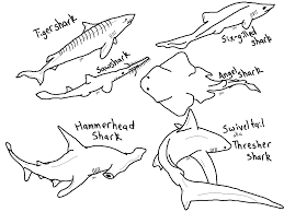 Small Picture Free Printable Shark Coloring Pages For Kids Inside Sharks