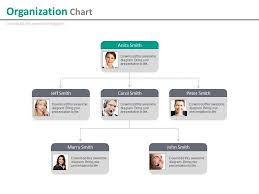 Org Chart Powerpoint Slide Multilevel Company Organizational Chart For Employee Profile