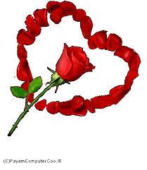 Image result for شکلکهای گل