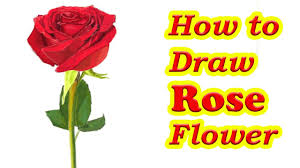 Small Picture How to Draw a Rose Flower Step By Step Easy Drawing Tutorial