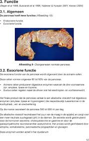 De, alvleesklier - informatie alvleeskliervereniging