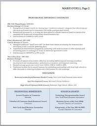 business owner resume