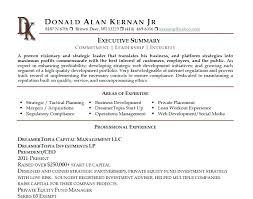 Example Summary For Resume Resume Summary Examples Elegant Executive