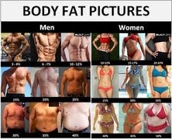 Men S Body Fat Chart Body Fat Percentage Chart For Men And Women That Ranges From Ideal