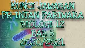 Kunci jawaban tema 1 kelas 6 revisi 2018. Good Kunci Jawaban Biologi Intan Pariwara Kelas 12 2019 Paling Dicari Cute766