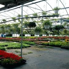 gaskos garden center garden center garden center