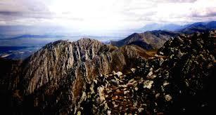 Капские горы Википедия