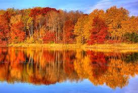 Реферат на тему золотая осень > найдено в документах Реферат на тему золотая осень