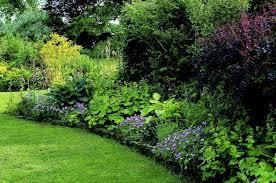 garden shade. Shade Garden