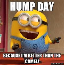 Funny Hump Day Quotes Interesting Hump Day Minion Pictures Photos And Images For Facebook Tumblr