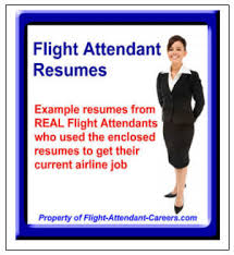 airline resume format flight attendant resume sample