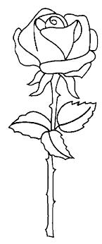 Disegno Fiori Rose Numero 15 Da Stampare E Colorare
