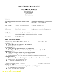 Middle Initial On Resume Luxury What Is A Resume Title Examples Good Resumes 20