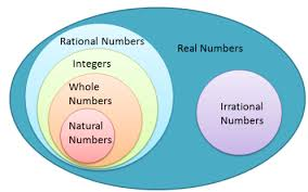 Rational Numbers Venn Diagram Worksheet Real Number Venn Diagram Blank Free Wiring Diagram For You