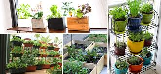 3 container gardening another version of a raised garden is to grow vegetables in a container or in wine crates better use protective seal