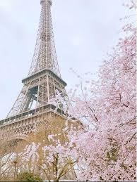 Bunga Sakura 5 Kota Selain Di Jepang Yang Tawarkan Keindahan Sakura Mekar