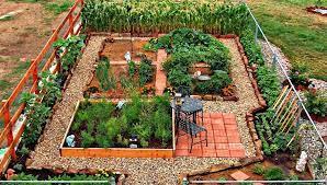 24 fantastic backyard vegetable garden