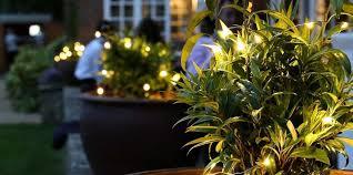 outdoor fairy lights stunning high quality fairy lighting at festive lights