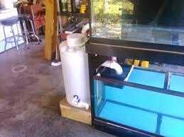 new 75g build diy pvc aquarium overflow coast to coast bean animal sump painted you