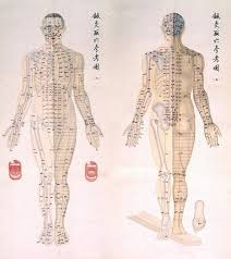 Acupuncture Chart Poster Chinese Chart Of Acupuncture Points 1 Poster