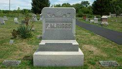 Laura J Riggs (1879-1894) - Find A Grave Memorial