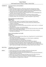 Digital Development Manager Resume Samples Velvet Jobs