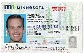 sample id cards dvs home new drivers license and id card designs