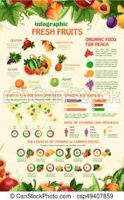 Vector Infographics Template Of Exotic Garden Fruits