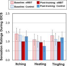 Mindfulness Based Training With Transcranial Direct Current