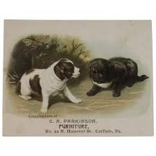 furniture stores in carlisle pa. Beautiful Furniture Victorian Trade Card Puppy Dogs Carlisle PA Furniture Store C A Parkinson On Stores In Pa