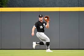 Chicago White Sox: Adam Engel might have important role