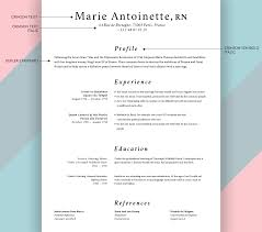 Resume Font Fonts For A Resume Resume For Study 61