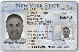 Measure Undocumented To – Would Give Assembly Ny'ers Legislative Gazette Licenses The Driver's